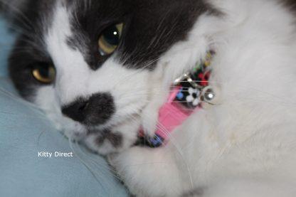 Daisy flower kitten and cat collar 12