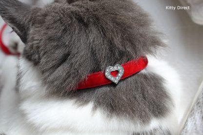 Handmade velvet diamante cat kitten safety collar_red