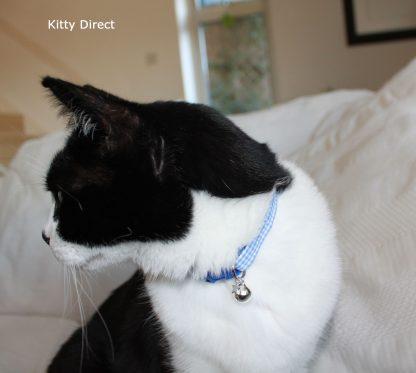 Handmade blue gingham cat kitten collar_6