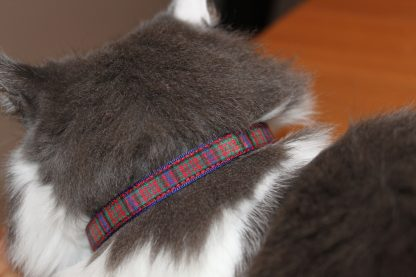 Scottish_Tartan_Plaid Cat Kitten Safety Collar_1