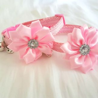 Satin Diamante Flower Cat Kitten Collar