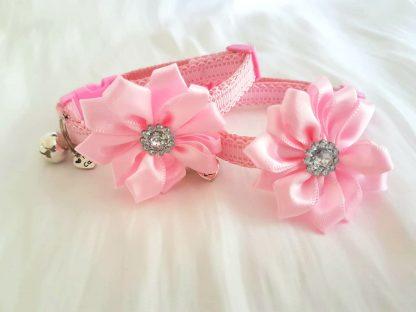 Satin Diamante Flower Cat Kitten Collar