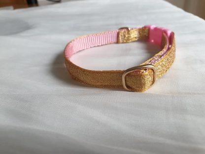 Gold cat kitten safety collar 3