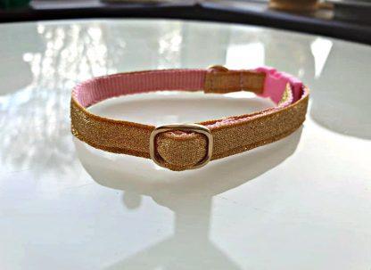 Gold cat kitten safety collar 4