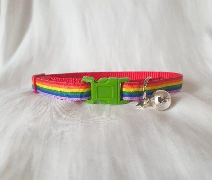 Gay Pride Rainbow Cat Kitten collar green buckle