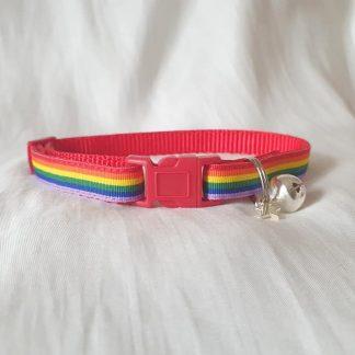 Gay Pride Rainbow Cat Kitten collar red buckle