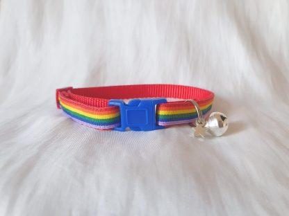 Gay Pride Rainbow Cat Kitten collar blue buckle